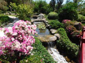 jardines-w-nancy-009
